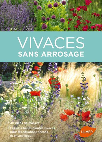 Vivaces sans arrosage, 2017